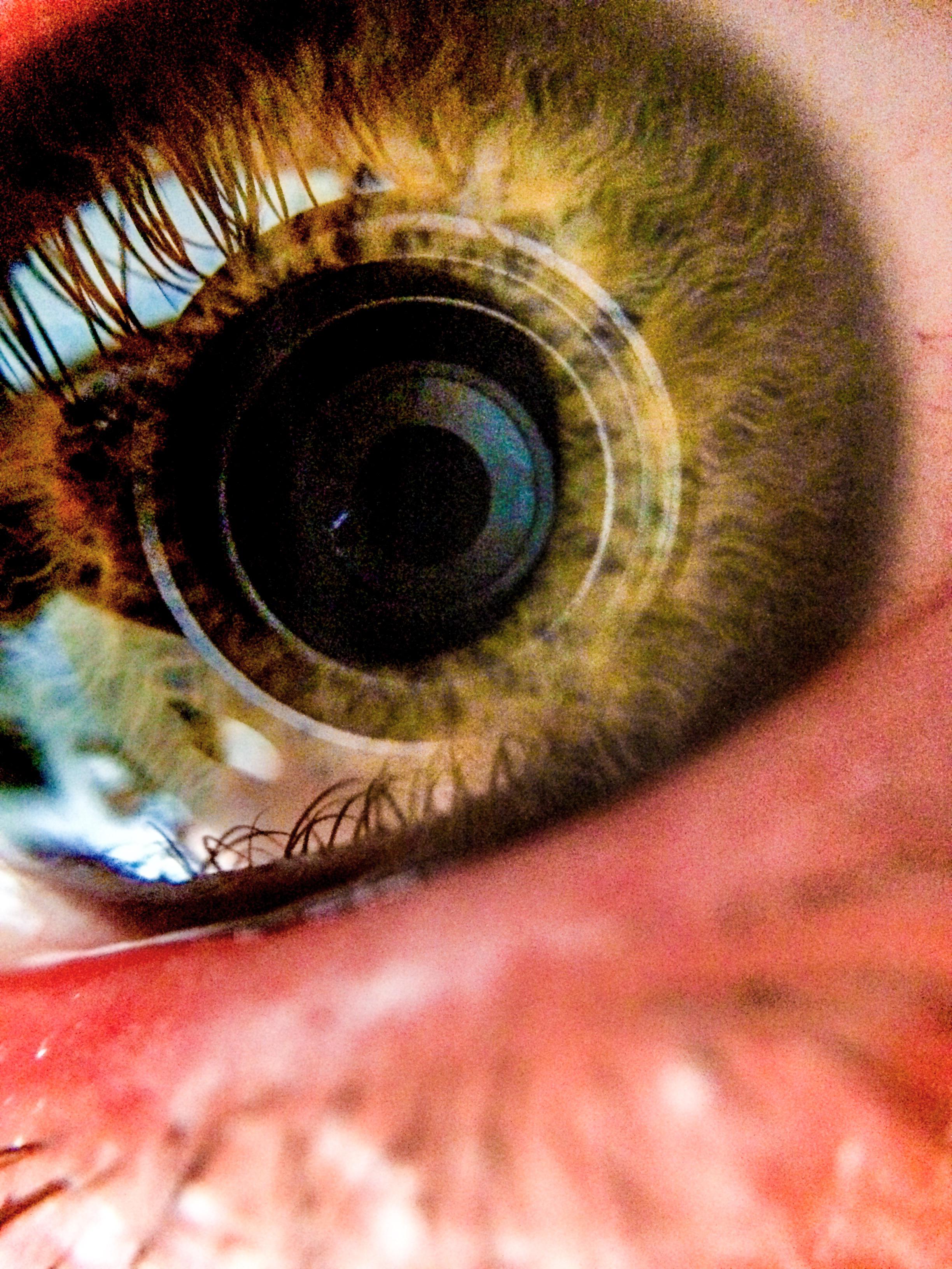 oeil de près